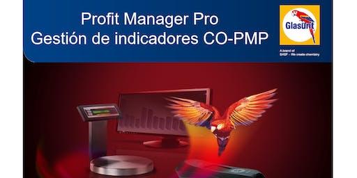 Profit Manager Pro - Gestión de Indicadores - CO-PMP