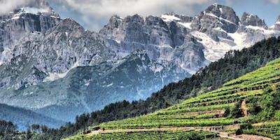 Weinverkostung Trentino Südtirol
