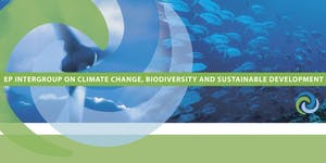 Regional Ocean Governance: Building on cooperation &...