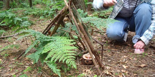 Scotstown Woodland Experience
