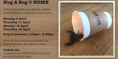 Hug A Bug at HOME