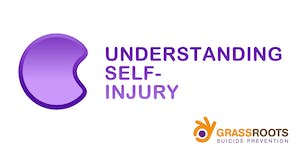 US: Understanding and Working with Self Injury