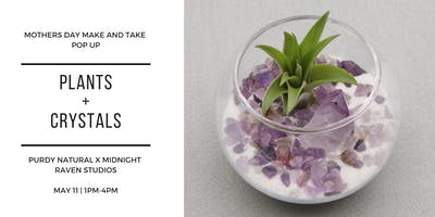 Plants + Crystals Mothers Day Pop Up