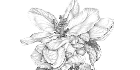 BOTANICAL DRAWING: Spring Flowers and Buds with Penny Brown tickets