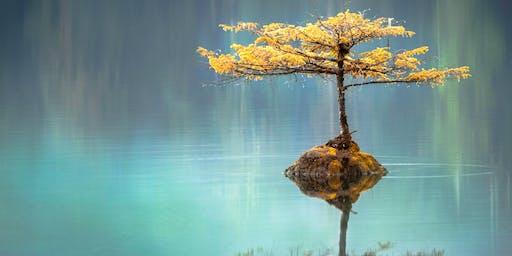 Mindfulness at ThePriory