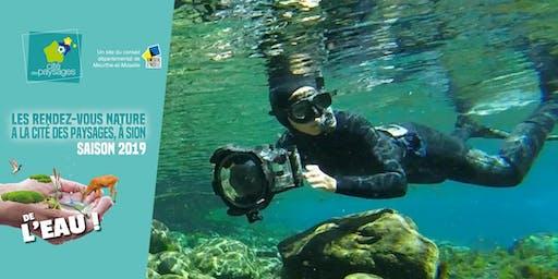 Projection: A la rencontre de nos poissons d'eau douce.