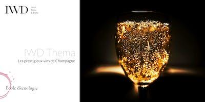 IWD Thema - Les prestigieux vins de Champagne