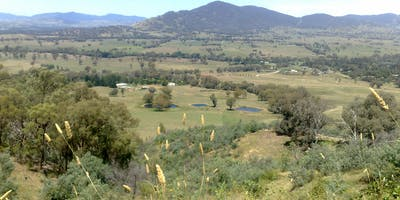 Park Stewardship Morning - Baranduda Conservation Reserve