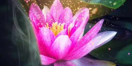 Wednesday Weekly Wisdom Teachings & Meditation Class