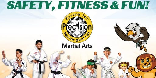 Precision Martial Arts Summer Day Camp 2019