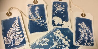 Botanical Cyanotype