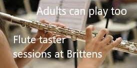 Flute Adult Taster Session