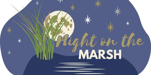 Night on the Marsh