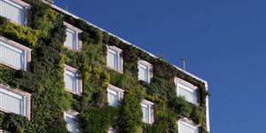 Les certifications vertes – Mythes et réalités