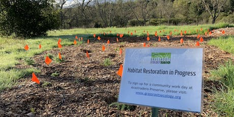 Wednesday Weed Warriors: Habitat Restoration at Arastradero Preserve tickets