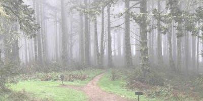 Sacred in the Land: Seasonal Pilgrimage on 6/23