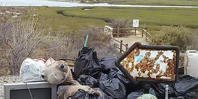Coastal Cleanup Day at the Bay