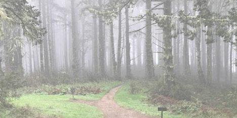 Sacred in the Land: Seasonal Pilgrimage on 12/15