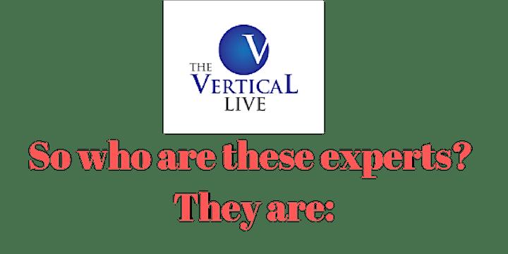 The Vertical Live: Year Long Marketing Mentorship image