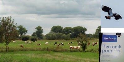 """Bijeenkomst \""""Relatie Bestrijdingsmiddelen en Weidevogels in Gelderland"""""""