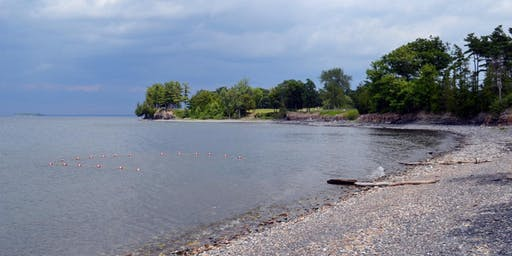 Day Row from Shelburne Farms to various sites on Lake Champlain