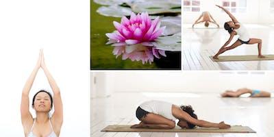 Alignment based Hatha Yoga April 2019