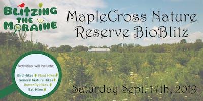 Blitzing the Moraine 2019! MapleCross Nature Reserve BioBlitz