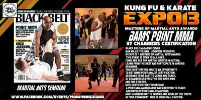 BAMS Point MMA 37 Chambers at Expo 13
