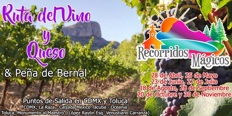 Ruta del Vino y Queso + Peña de Bernal tickets
