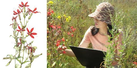 Speaker Series: A Wildflower Painter's Colorful Documentation: Project 200 tickets