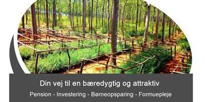 Gratis informations aften om bæredygtig investering i tropisk skov