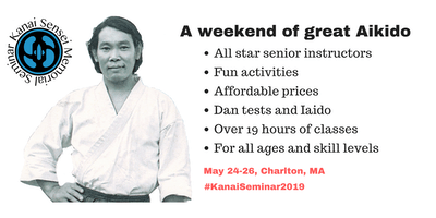Kanai Sensei 2019 Memorial Seminar (Aikido)