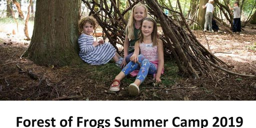 Forest of Frogs summer camp 2019