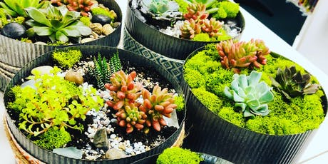 Make it & Take it: Succulent Garden tickets