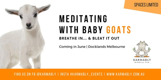 (Melbourne) Meditate with Baby Goats & Lambs - Breathe In... & Bleat Out