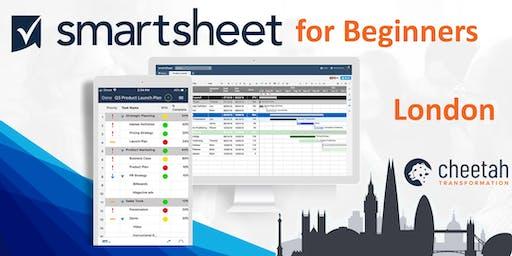 Smartsheet for Beginners (1 day)