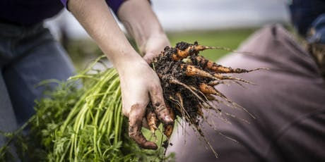 Madison College - Cooking on the Farm 1, Session II -  July 15 & 16, 2019 tickets