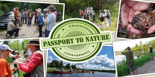 Passport to Nature: Hike to Find Fungi