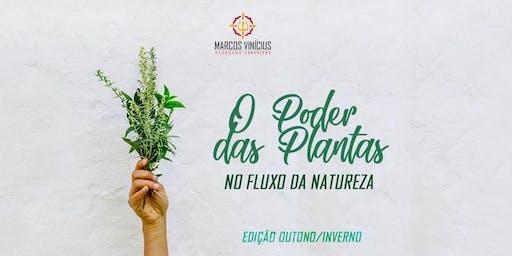 O PODER DAS PLANTAS - CAMPINAS