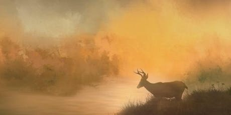 Focus on Fog:  The Art of Soft-Light Nature & Landscape Photographytickets