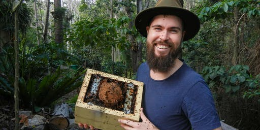 NaturallyGC KIDS Native Stingless Bees