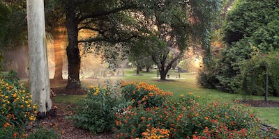 Tour of Springvale Botanical Cemetery with Free Lunch