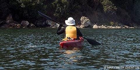 High Tide Wetland Kayaking