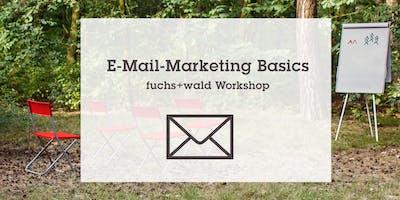 E-Mail Marketing Basics für Dein Business