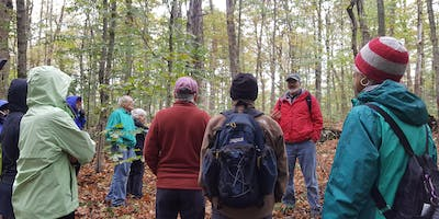 Retracing Native Histories on the Landscape - Guided Walk