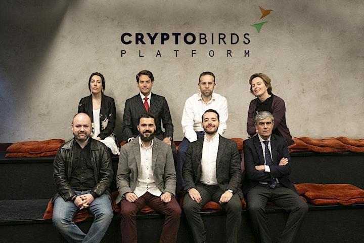 Imagen de Presentación STO Crypto Birds Platform