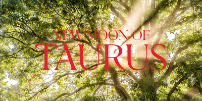 New Moon of Taurus & Spiritual Sunday – BOCA RATON