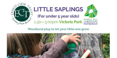 LITTLE SAPLINGS - Victoria Park, Nelson