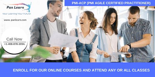 PMI-ACP (PMI Agile Certified Practitioner) Training In Bangor, CA