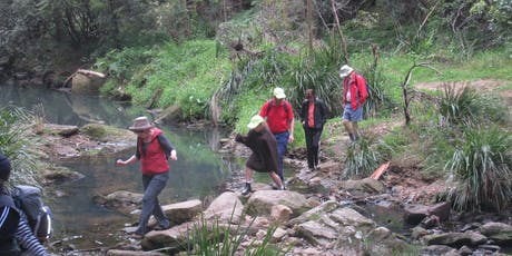 Stevenson's Creek to Ted Horwood Reserve Walk tickets